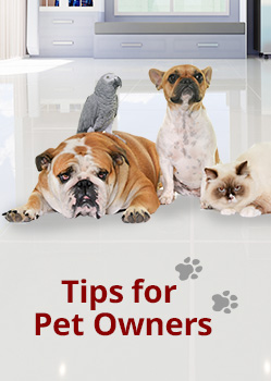 Pet Owners Banner